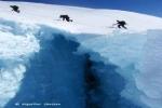 Über die Gletscher auf dem Beerenberg: ...