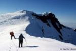 Am Beerenberg-Gipfel, in 2277 Metern Höhe.